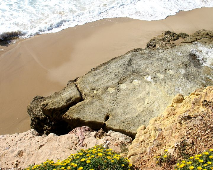 Dinossaur footprints in Salema, Algarve